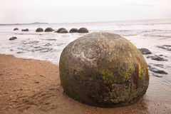 Moeraki boulders remarkable,New Zealand, South Island Royalty Free Stock Images
