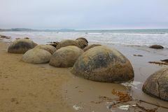 Moeraki-Flusssteine in Koekohe-Strand auf der Welle-geschnittenen Otago-Küste von Neuseeland lizenzfreie stockfotografie