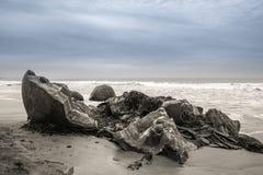 Moeraki-Flusssteine in Otago, Südinsel, Neuseeland lizenzfreie stockfotos