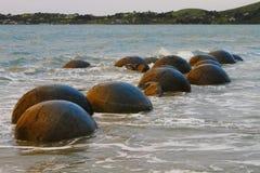 Moeraki stenblock Fotografering för Bildbyråer