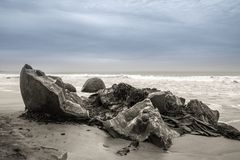 Moeraki stenblock i Otago, södra ö, Nya Zeeland royaltyfria foton