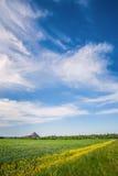Moeras en de zwarte bergen, slagheap Stock Foto