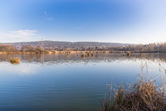 Moeras van Mercallo-meer Comabbio, provincie van Varese, Italië Stock Fotografie