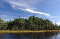 Moeras Viru in aard Estonia.The van Estland. Stock Afbeelding