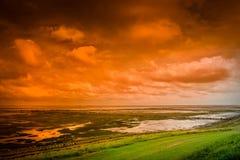 Moerasland bij zonsondergang Royalty-vrije Stock Afbeelding