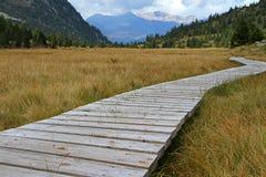 Moerasland in de bergen Stock Afbeelding