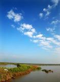 Moerasland en blauwe hemel Stock Afbeelding