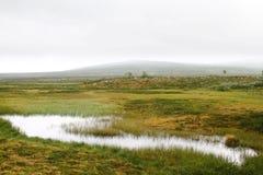 Moerasland en nevelige heuvels Royalty-vrije Stock Fotografie