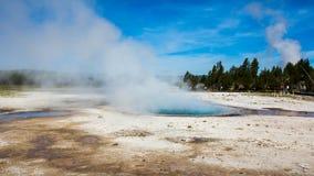 Moerasland met geothermisch in yellowstonepark stock fotografie