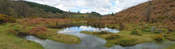 Moerasland op dartmoor nationaal park Devon het UK royalty-vrije stock afbeeldingen