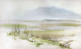 Moerassig landschap Stock Foto's
