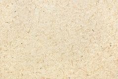Moerbeiboomdocument Stock Afbeeldingen