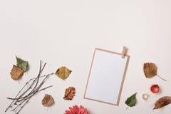 Mofa de la tarjeta de papel ascendente y hojas de otoño secas del otoño Foto de archivo