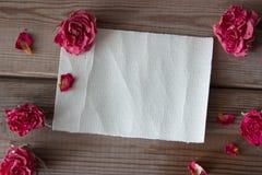 Mofa encima de rosas Imagenes de archivo