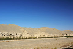 Mogao grottoes with blue sky. Was taken in dunhuang  of china, the mogao grottoes Royalty Free Stock Images