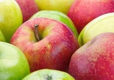 mogen äpplefrukt Arkivbild