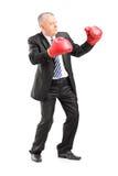 Mogen affärsman med röda boxninghandskar som är klara att slåss Arkivbild