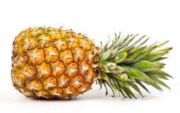 mogen ananas Royaltyfri Foto