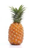 Mogen ananas på vit Arkivfoto