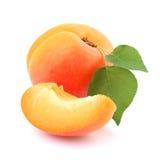 Mogen aprikos med bladet Arkivbild