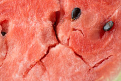 Mogen bakgrund för textur för makro för vattenmelonköttcloseup Royaltyfri Foto
