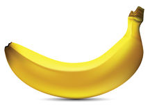 mogen banan Arkivbilder