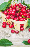 mogen Cherryred Royaltyfria Bilder