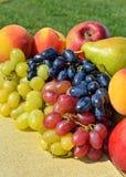 Mogen druva, persikor, päron på gräset Royaltyfri Bild