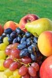 Mogen druva, persikor, päron på gräset Royaltyfri Foto