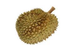 Mogen durian (konungen av frukter) royaltyfri bild