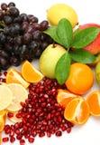mogen frukt Arkivbilder
