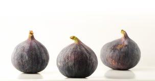 Mogen frukt för fikonträd tre på en ljus bakgrund med reflexion Arkivfoto