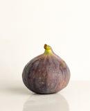 Mogen fruktfikonträdcloseup med reflexion Arkivfoton