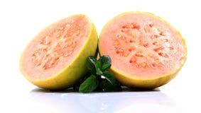 mogen guava Arkivbild
