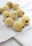 mogen guava Arkivfoton