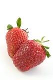mogen jordgubbe Royaltyfri Bild