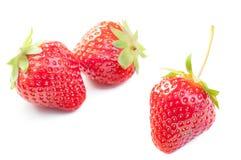 Mogen jordgubbe som isoleras på det vita bakgrundsslutet upp royaltyfria foton