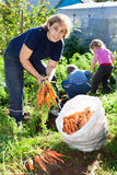 Mogen kvinna i trädgård med barn Fotografering för Bildbyråer