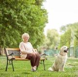 Mogen kvinna med hundsammanträde på bänk i parkera Royaltyfri Fotografi