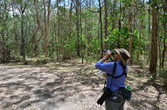 Mogen kvinna som birdwatching Arkivfoto