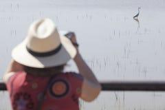 Mogen kvinna som birdwatching Royaltyfri Fotografi