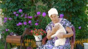 Mogen kvinna som spelar med hennes hundsammanträde utomhus nära hans hem arkivfilmer