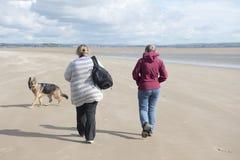 Mogen kvinna som två promenerar stranden med deras elsassiska hund Arkivfoto