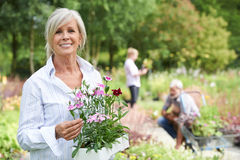 Mogen kvinna som väljer växter på den trädgårds- mitten Fotografering för Bildbyråer