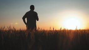Mogen man f?r agronom som anv?nder smartphonen i ?kerbruk lantg?rd Ung bonde med mobiltelefonen i händer i fältet på stock video