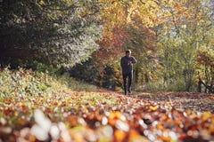 Mogen man på Autumn Run In Woods Checks aktivitetsbogserare royaltyfri foto