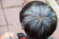 Mogen man som bakifrån ses i huvudet och grå färghåret Fotografering för Bildbyråer