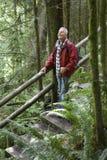 Mogen man som ser upp i skog Arkivbild