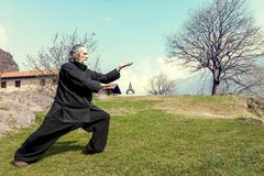 Mogen man som utomhus öva Tai Chi disciplin royaltyfria bilder