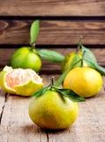 Mogen Mandarine med citruns för sidatangerinMandarine på trävertikala tabellbakgrundscitrusfrukter Royaltyfria Foton